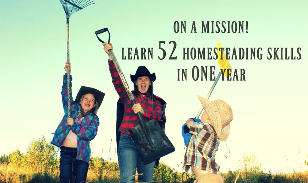 Learn 52 new homesteading skills in one year